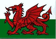 Flag of Wales, Y-Draig-Coch